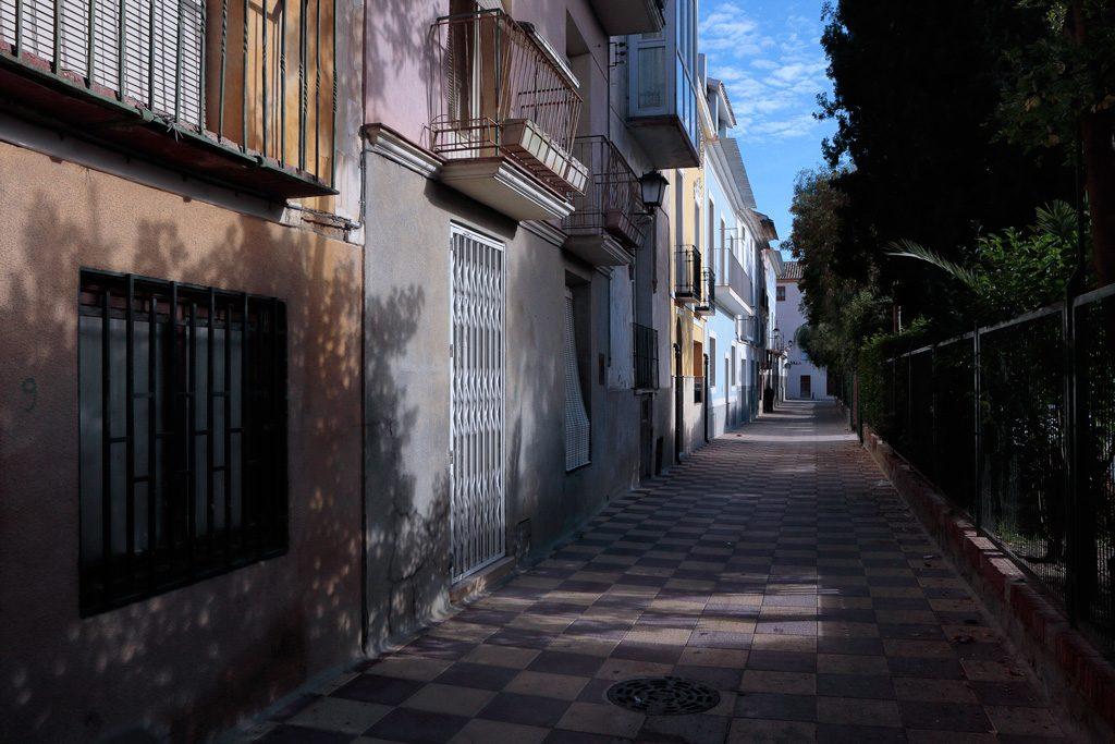 Calle Paseo en Mula