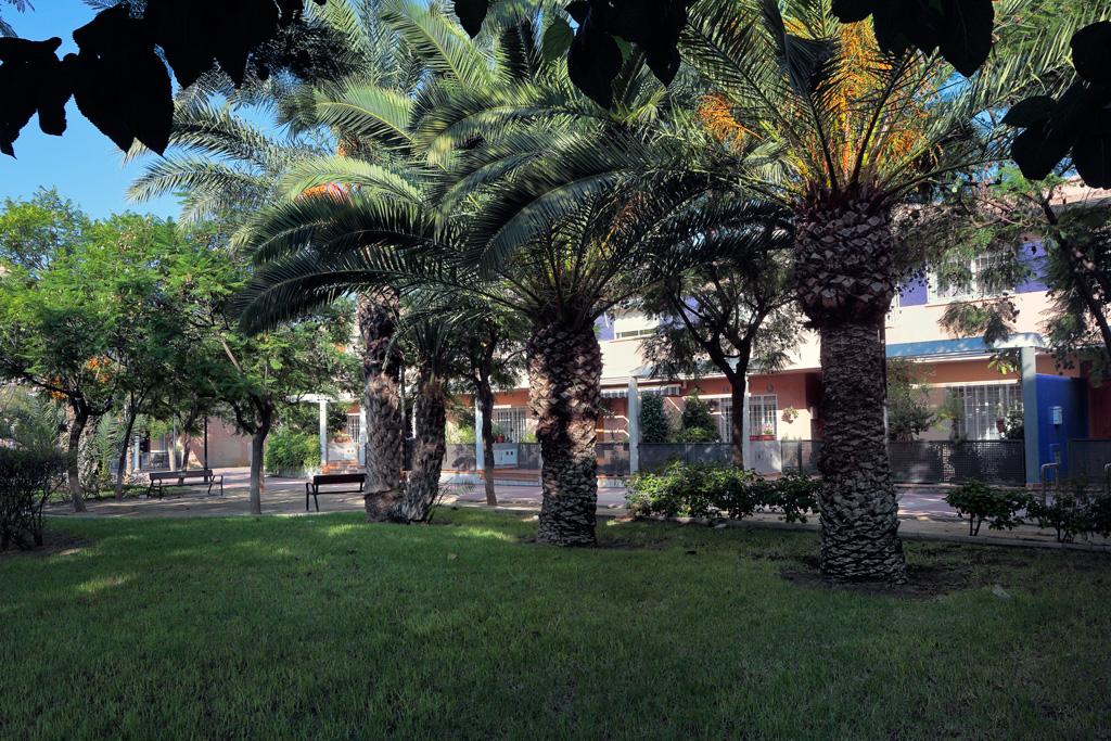 Jardín consultorio medico