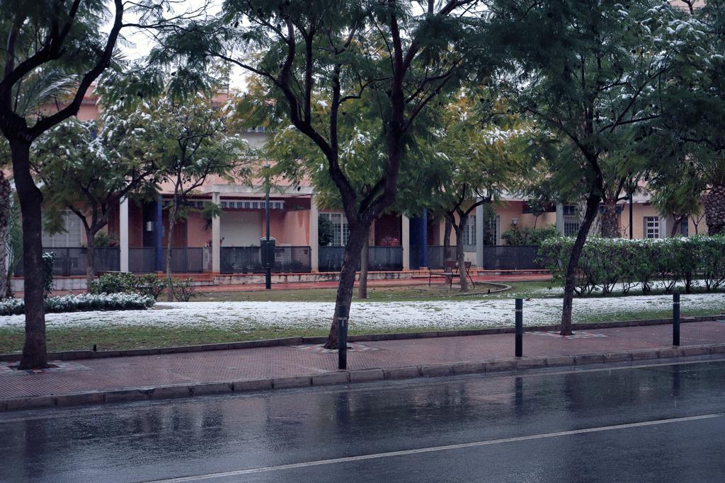Jardín del consultorio medico
