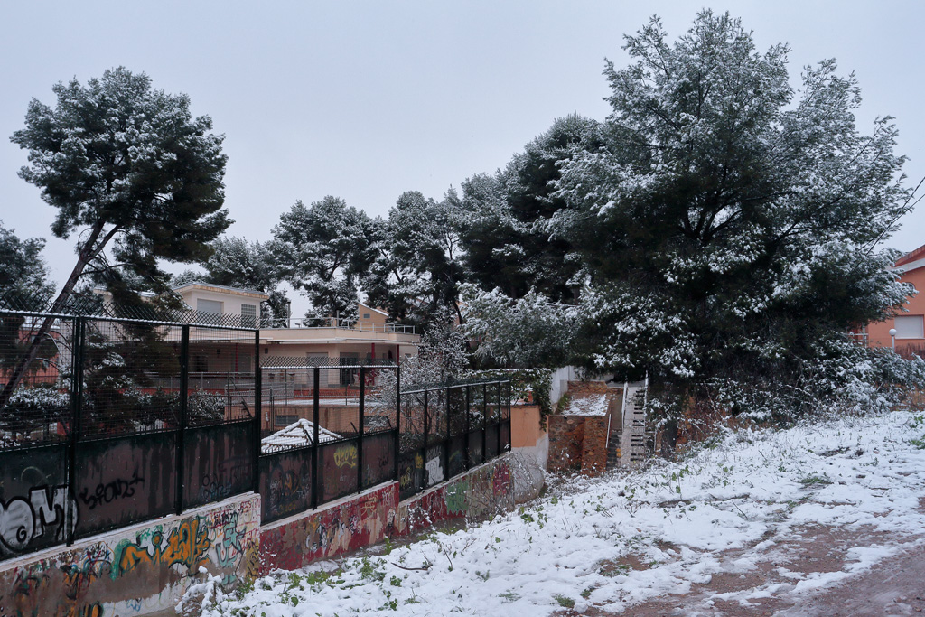Monteliso nevado
