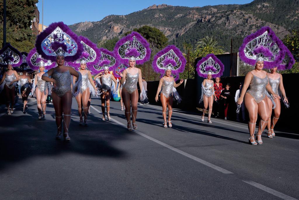 Comparsa desfile de Carnaval en Santo Ángel