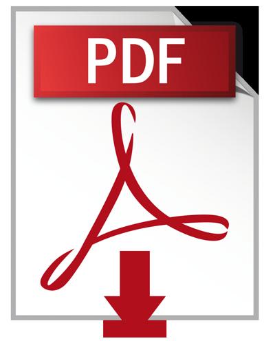 Bajar documento en formato PDF