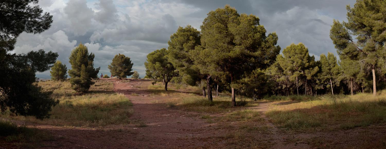 Monteliso en Santo Ángel