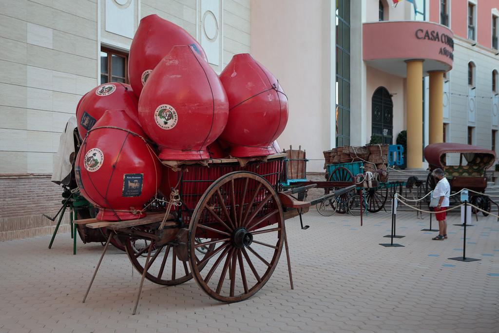 Exposición de carros en la plaza del ayuntamiento de los Alcazares