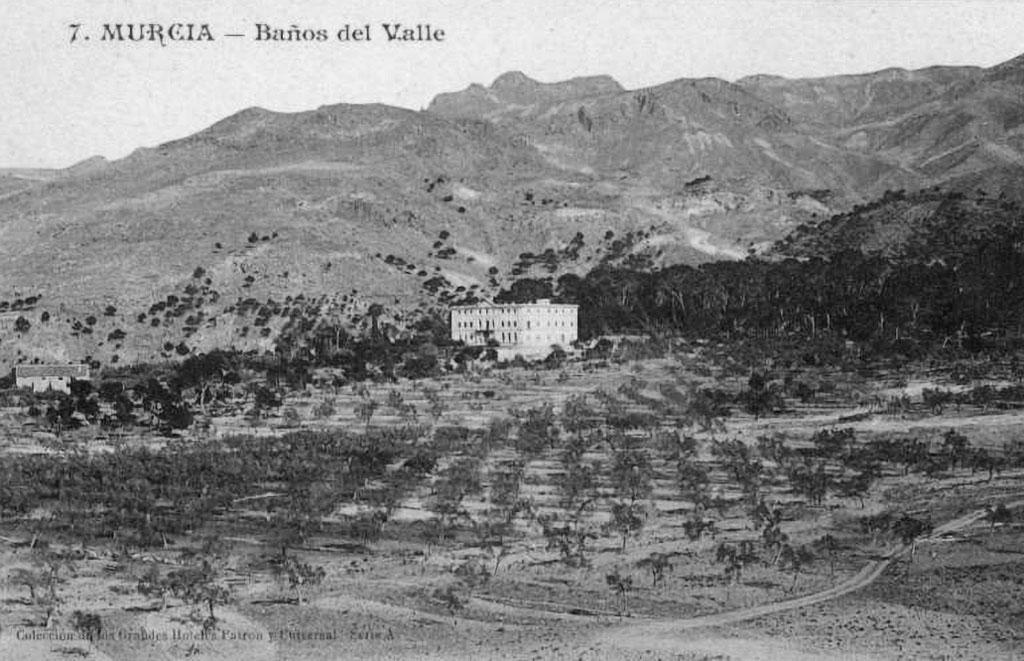Vista de parcelas de olivos y arboleda con Baños de Verdolay al fondo