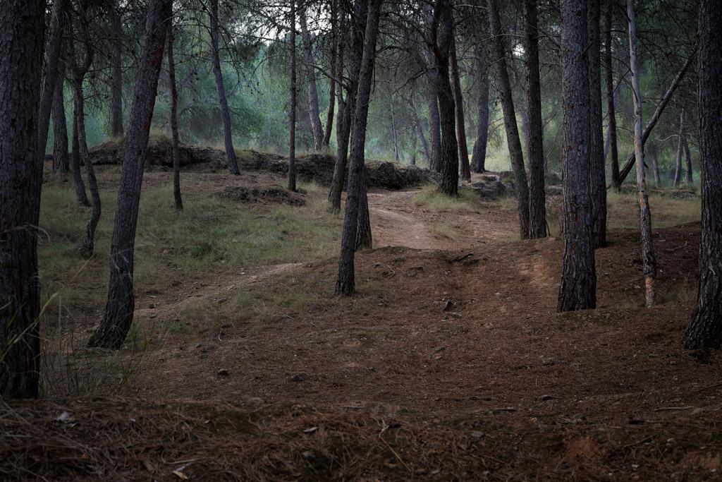 Un sendero en el entorno natural El Valle