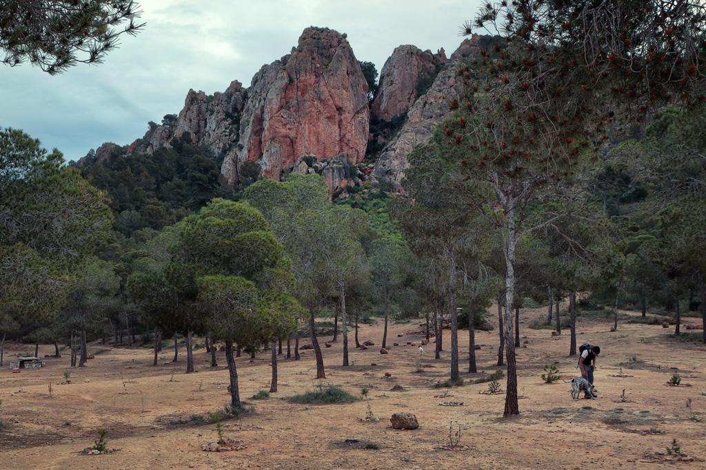 """""""la Panocha"""" en la zona de La Cresta del Gallo"""