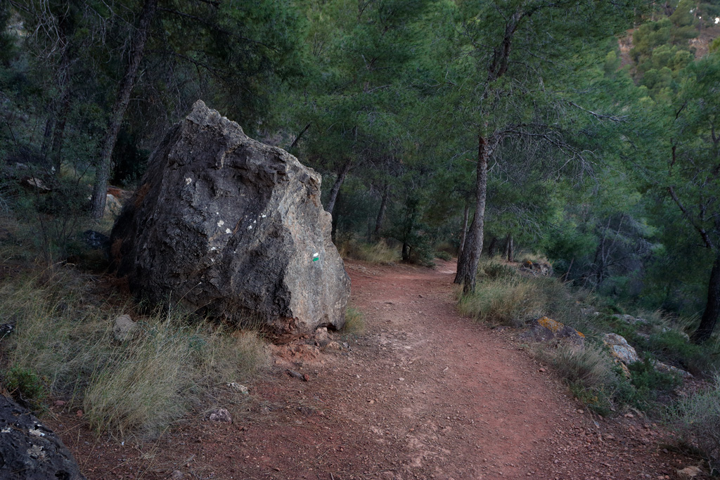 """Path in the mountain of """"el Valle"""" park - Tourism in the natural environment"""