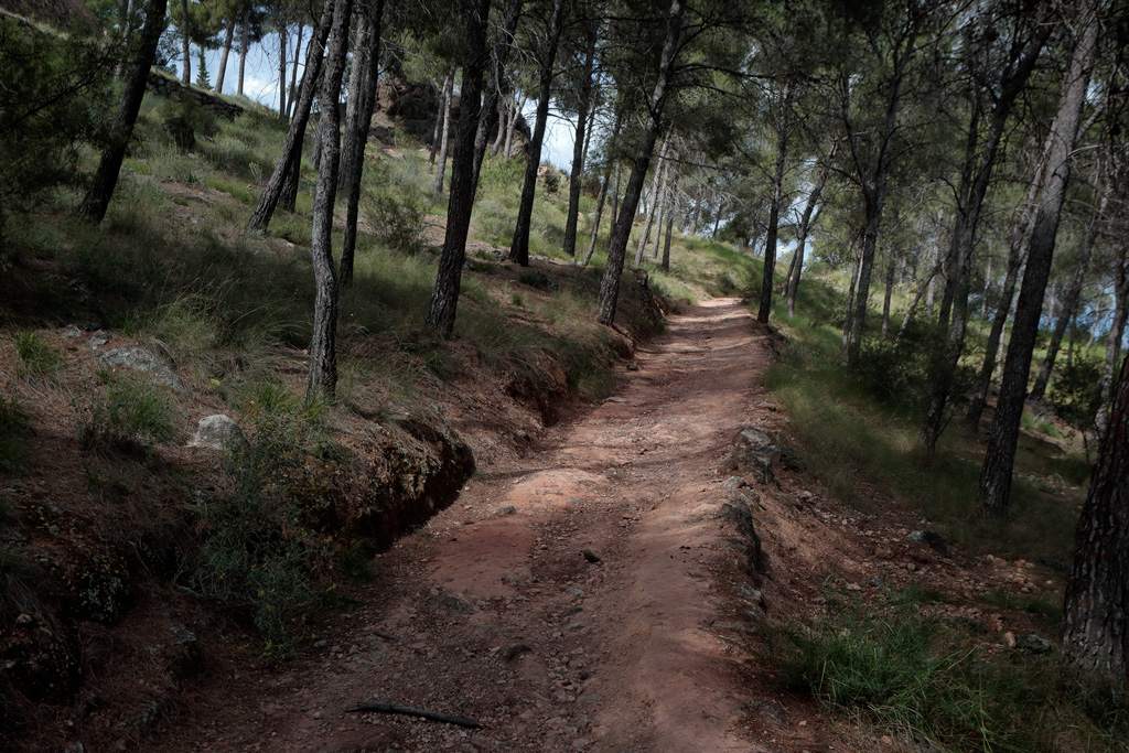 """Trail in the park """"el Valle"""" - Turismo Natural"""