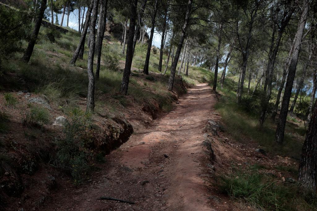 """Sendero en parque """"el Valle"""" - Turismo Natural"""