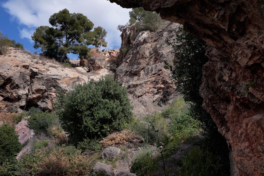 Barranco del Pino