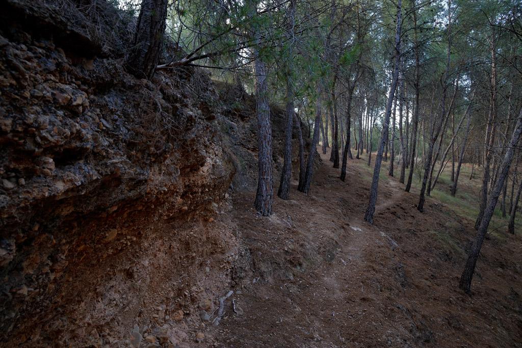 Ladera de una rambla en nuestro entorno natural