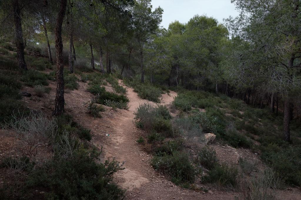 Sendero en la ruta de las trincheras