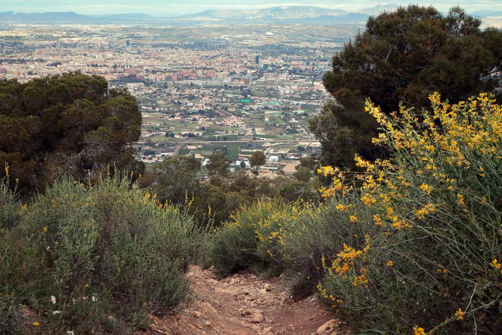 Vista a Murcia desde la subida a la Cresta del Gallo