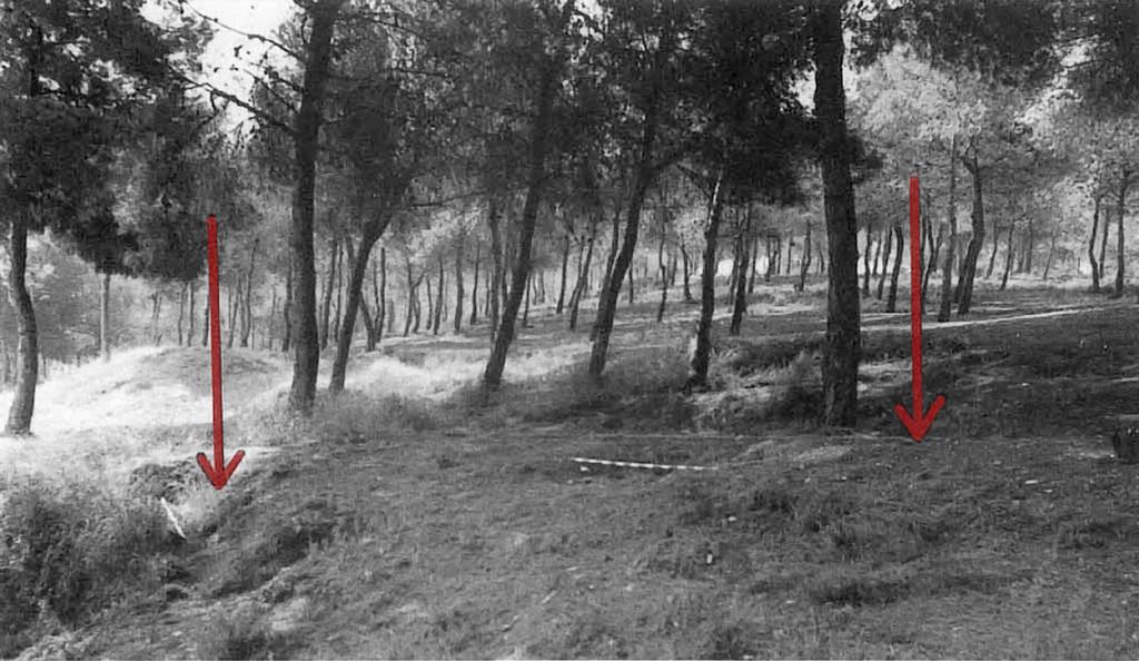 Área de excavación en 1989