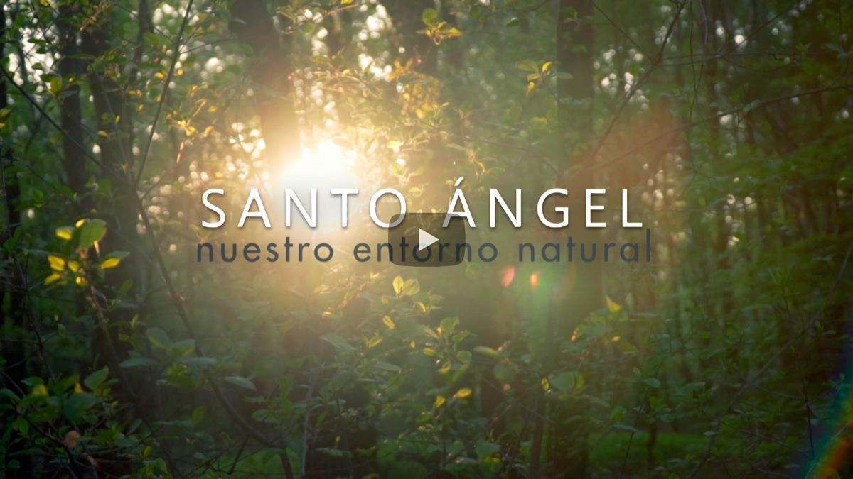 Vídeo de nuestro entorno natural